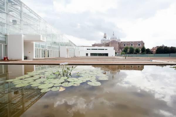 Inaugurato a Padova l'orto botanico più antico del mondo