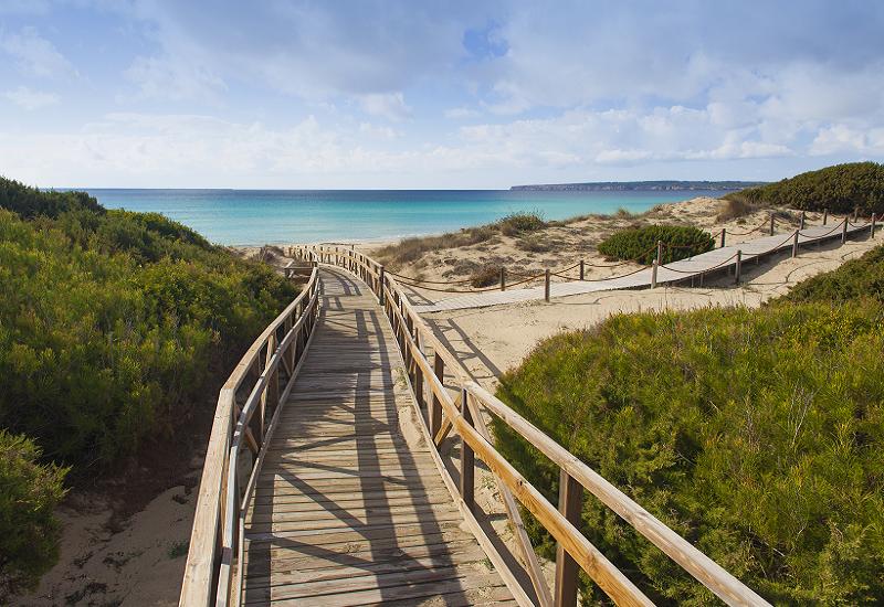 Formentera promuove un turismo sostenibile con 'Save Posidonia Project'