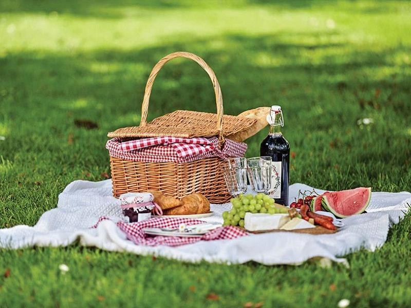 Come realizzare un picnic glamour e salutare